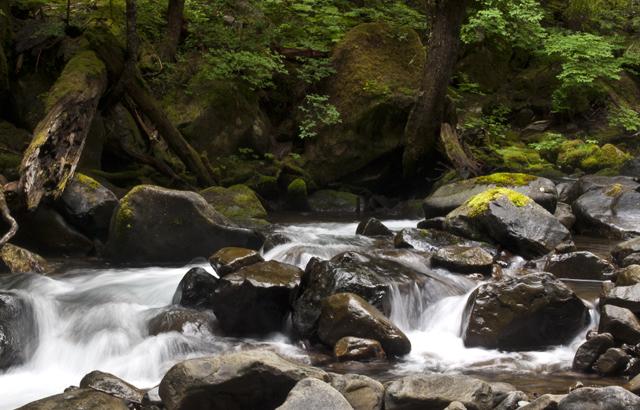 Sol Duck River
